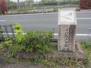 くつろぎの道.JPG