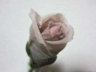 バラ・3.JPG