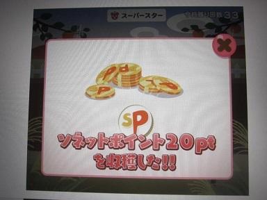 ポイント・野菜 (2).JPG