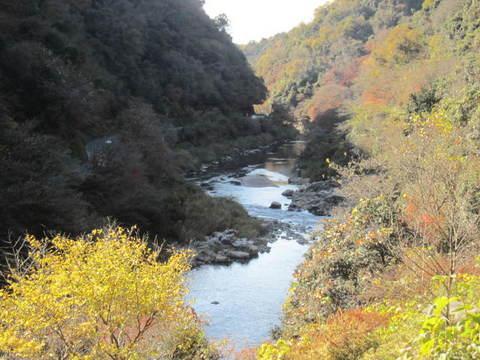 モミジ山・玉野川.JPG