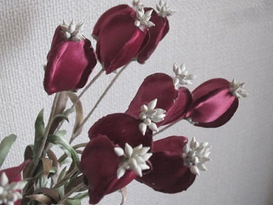 ローダミンの花・1.JPG