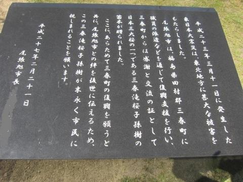 三春滝桜標.JPG