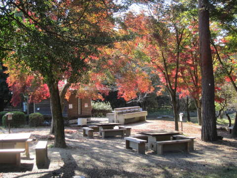公園・バーベキュー3.JPG
