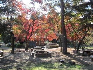 公園・バーベキュー4.JPG