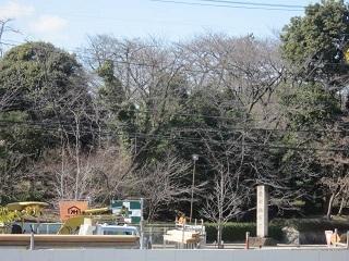 古戦場公園・2.JPG