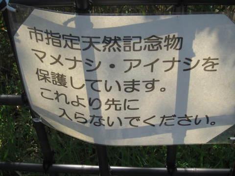 城山・マメナシ標.JPG