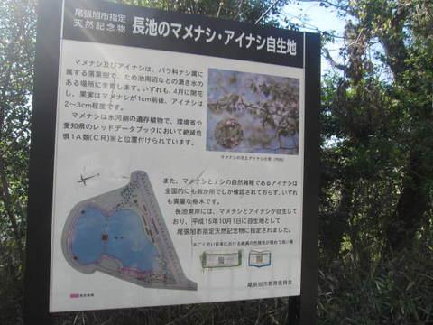 城山・マメナシ標1.JPG