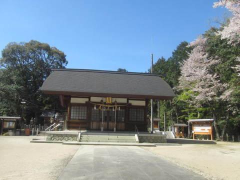 多度神社・本殿.JPG