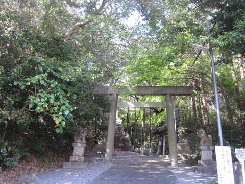 多度神社・鳥居.JPG
