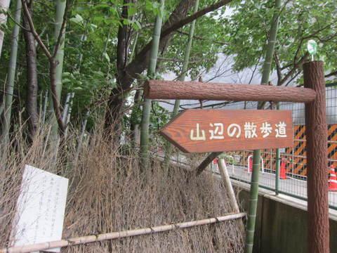 山辺の散歩道.JPG
