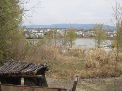 山辺の散歩道・維摩池.JPG