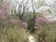 山辺の散歩道・4.JPG