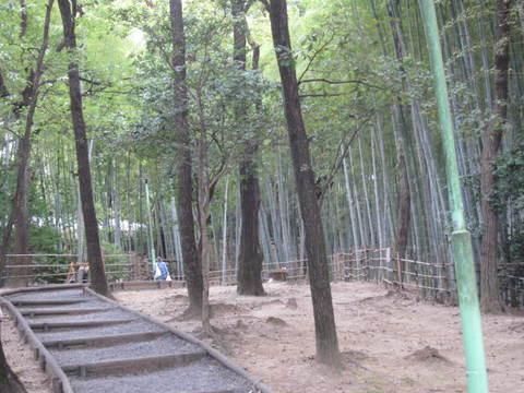 市民祭竹林.JPG