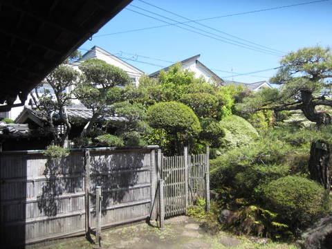 庭・3.JPG