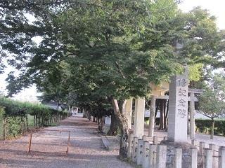本地八幡宮・2.JPG