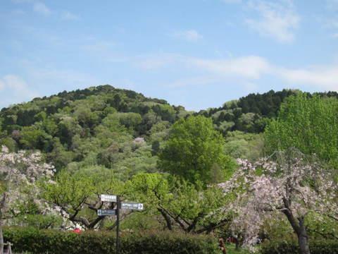 東谷山.JPG