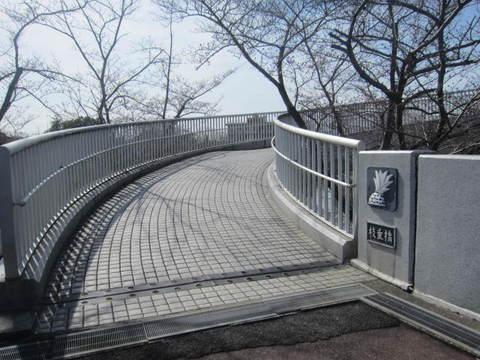 東谷山・枝垂れ橋.JPG