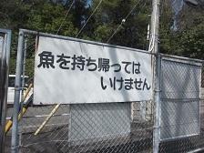 東谷山・釣り池3.JPG