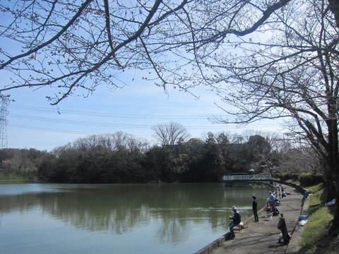 東谷山・釣り池4.JPG