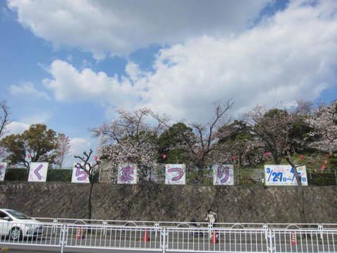 桜祭り・1.JPG