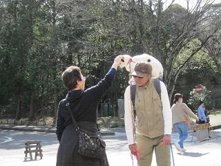 森林・ネコ.JPG