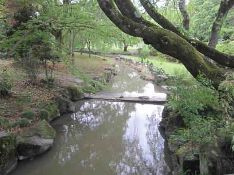 森林・小川.JPG