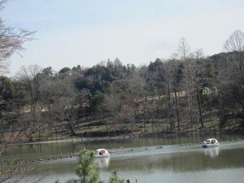 森林公園・ボート池1.JPG