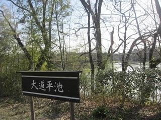 森林公園・大道平池.JPG