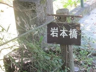森林公園・岩本橋.JPG