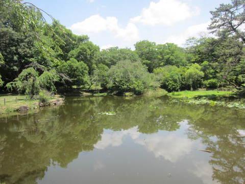 森林池・1.JPG