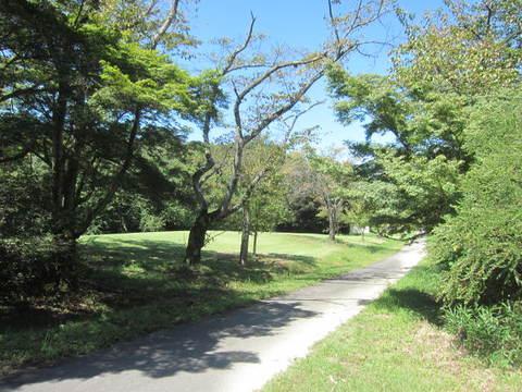 植物園.JPG