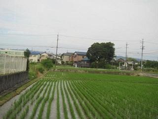 田園・4.JPG