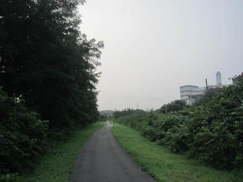 矢田川散歩道.JPG