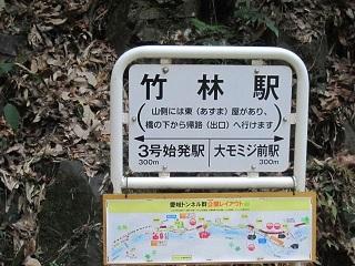 竹林駅.JPG