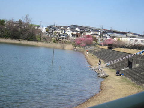 維摩池・釣り3.JPG