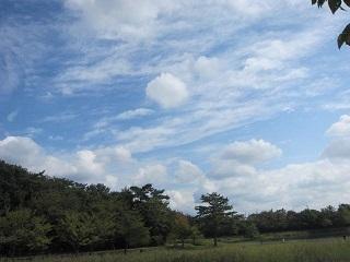 維摩池・雲1.JPG