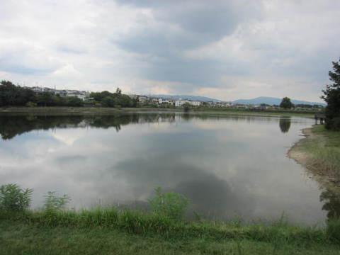 維摩池・6.JPG