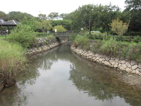 維摩池取水口.JPG