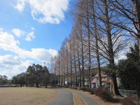 緑地公園・メタセ.JPG
