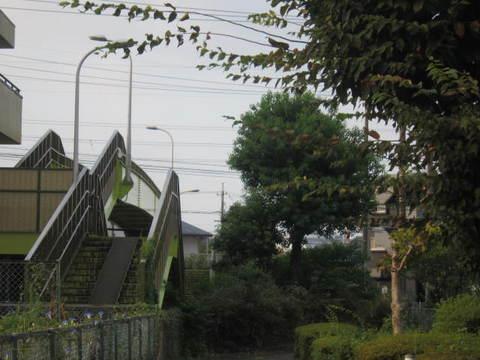 陸橋.JPG