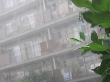 雨・7.JPG
