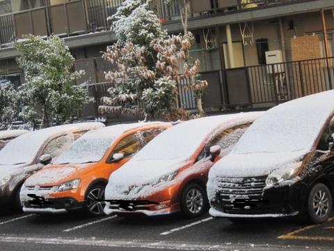 雪・車.JPG