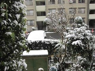雪・6.JPG