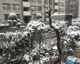雪・7.JPG