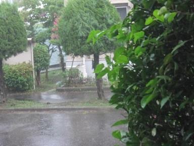 雷雨・2.JPG