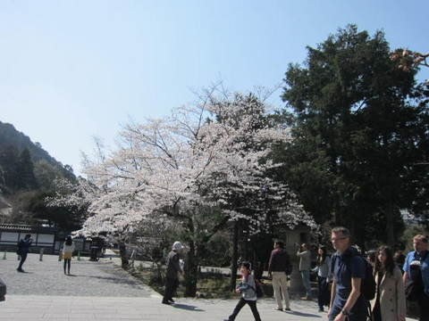 1・南禅寺.JPG
