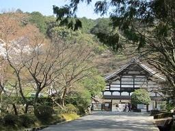 1・南禅寺本堂3.JPG