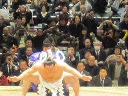 6・力士白鵬土俵入り1.JPG